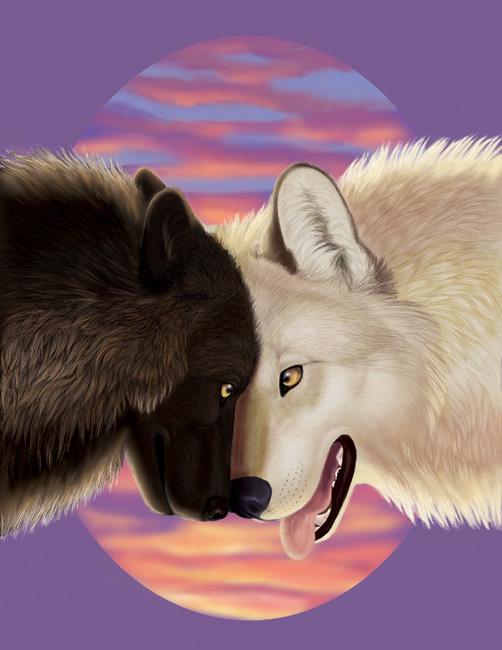 Серый волк и красная шапочка раскраска